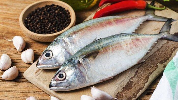 Khasiat Ikan Tongkol Untuk Kesehatan Tubuh