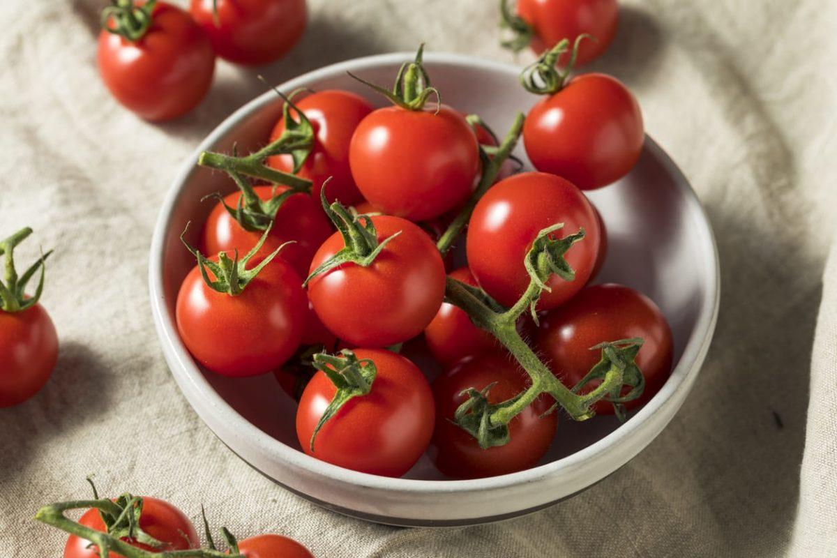 Khasiat Tomat Cherry Bagi Kesehatan
